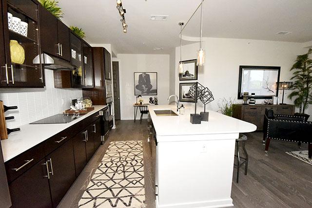 Luxury Houston Apartments