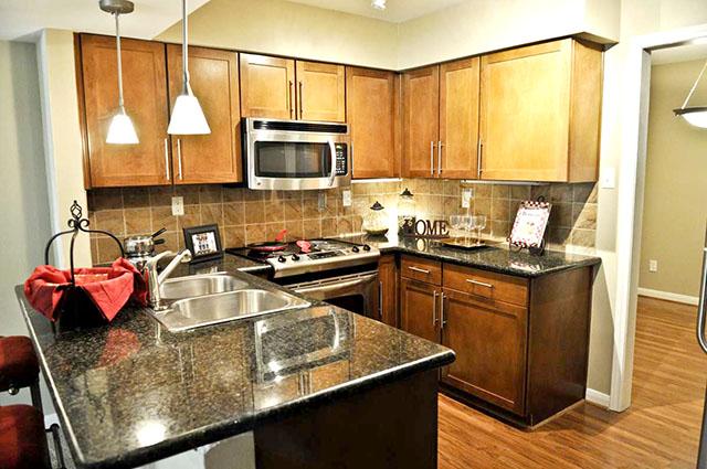 Classic Lux Houston 77024 Second Chance Houston Apartments – APTG146