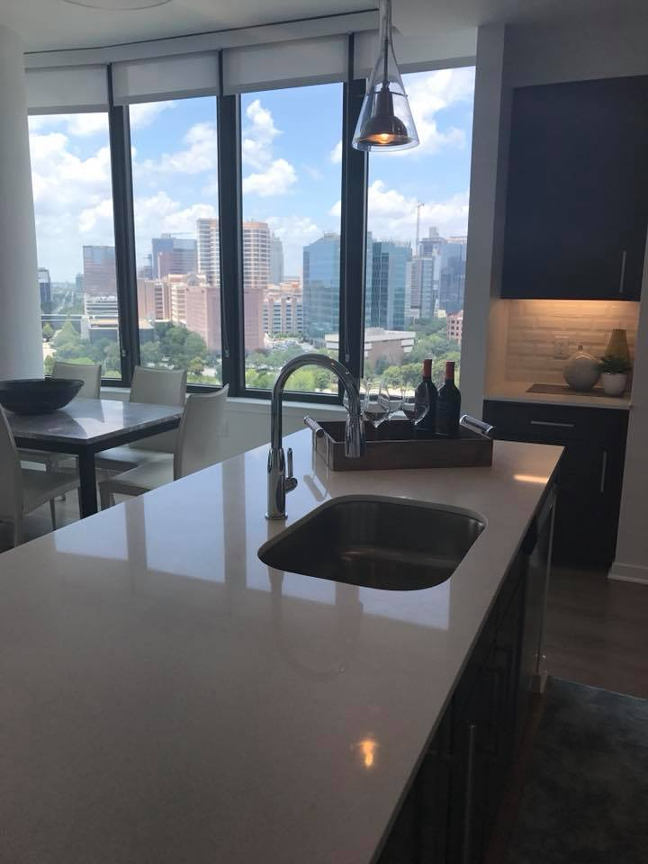 This View for Less than 2 Grand A month Houston Med Center Highrise
